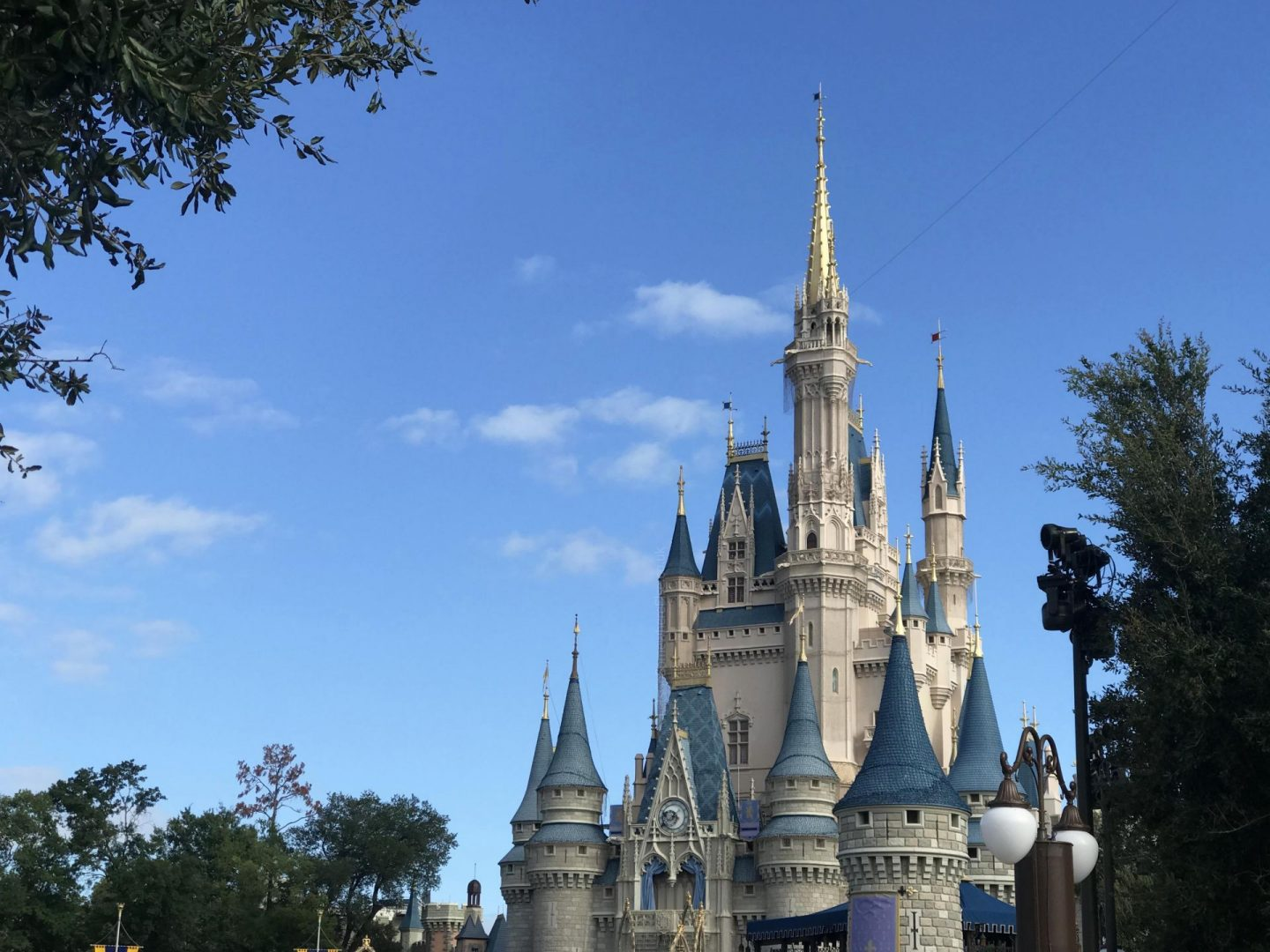 Disney World Florida Castle