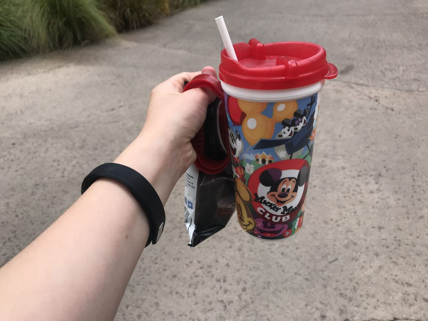 Disney World Art Of Animation Reusable Cup
