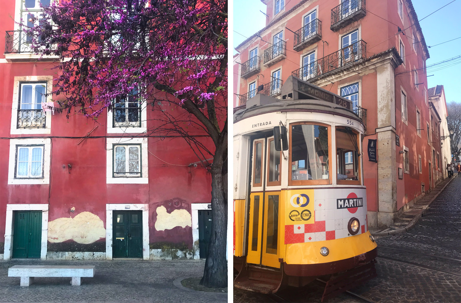 Alfama District Lisbon Blossoms and Yellow Tram