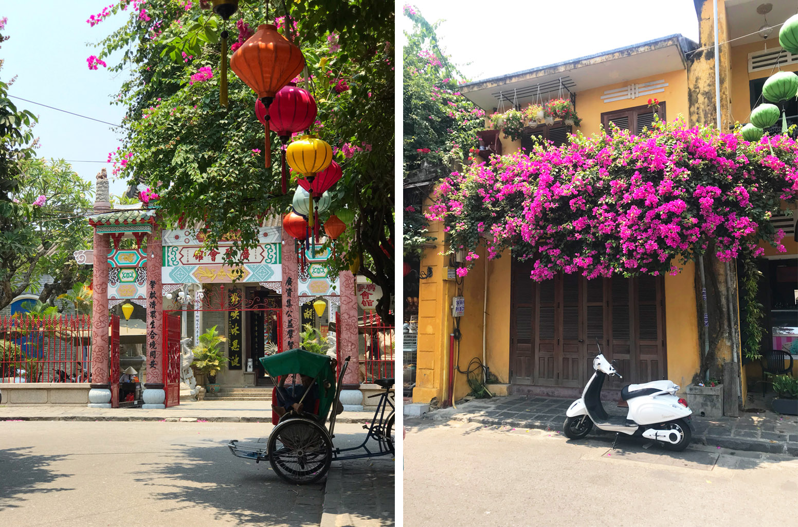 Hoi An (Hội An) Streets and Blossoms
